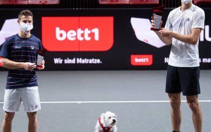 Alexander Zverev se consagró en el ATP 250 de Colonia 2
